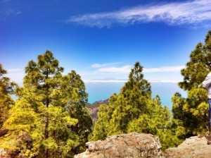 Gran Canaria Vest
