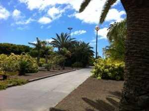 Gran Canaria Øst Parken I Telde