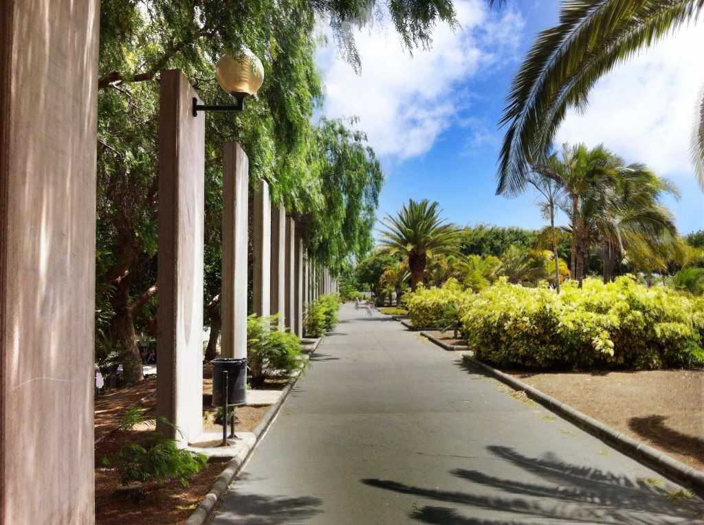 Gran Canaria Øst Telde parken