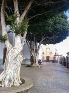 Gran Canaria Øst Ingenio Kirkeplassen i Carrisal