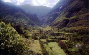 Agaete dalen Gran Canaria Vest