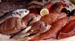 Gran Canaria Nord Arucas fisk