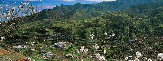 Gran Canaria Øst san mateo