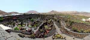 Jardín_de_cactus_pano