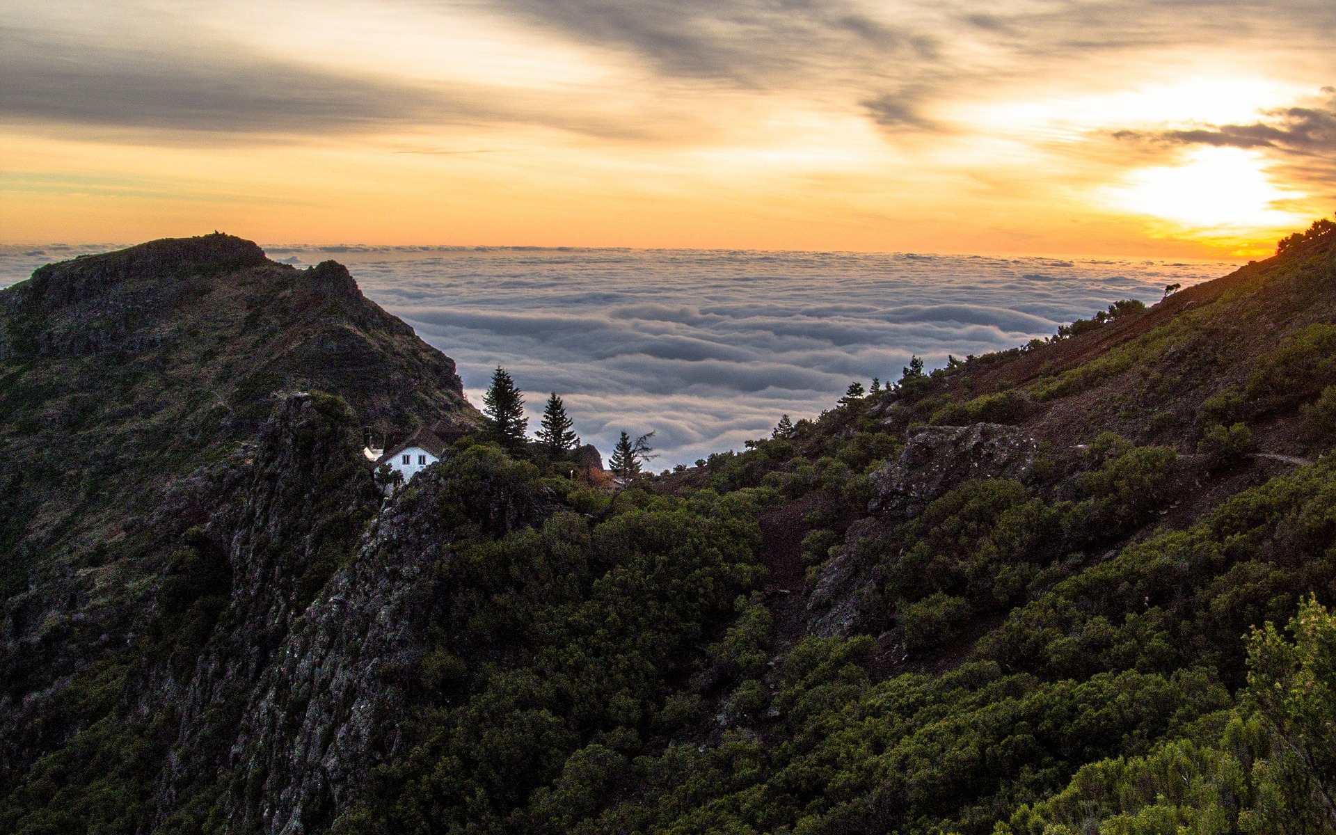 Madeira –  øygruppen