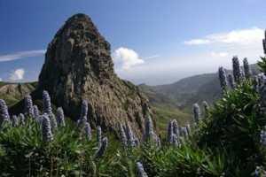 monumento_natural_los_roques La Gomera