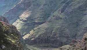 reserva_benchijigua La Gomera