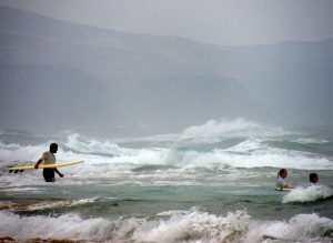 Surfere på Fuerteventura - theislandsinthesun.com