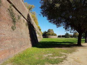Rapallo - Lucca Chianti