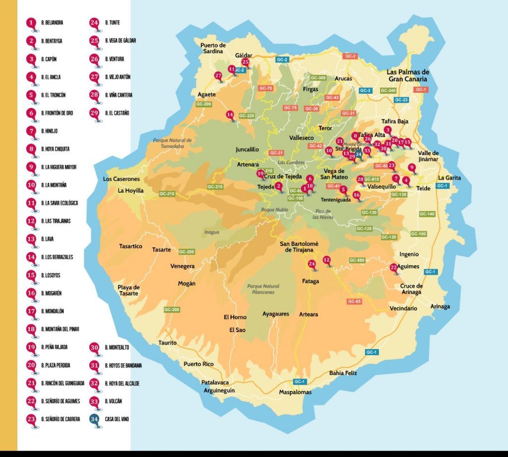 Vingårder Gran Canaria