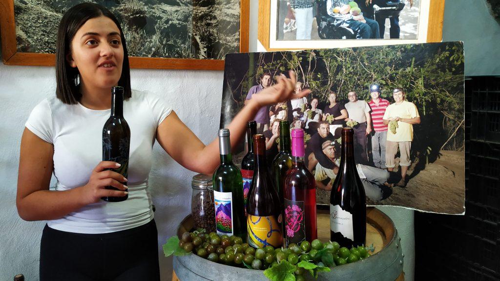 Omvisning på Vingård Gran Canaria (2)