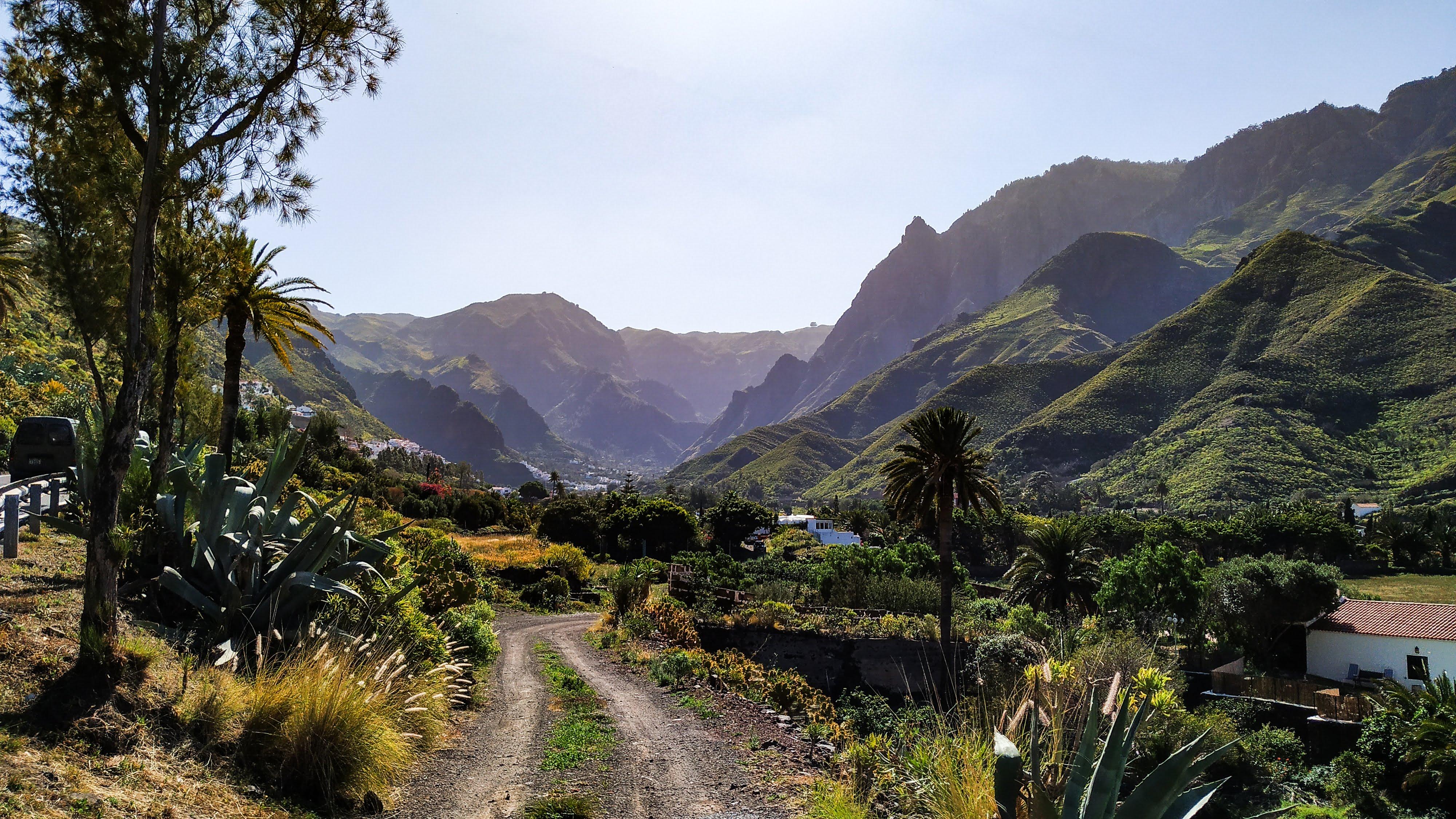 Valle de Agaete – Kaffe og Vin