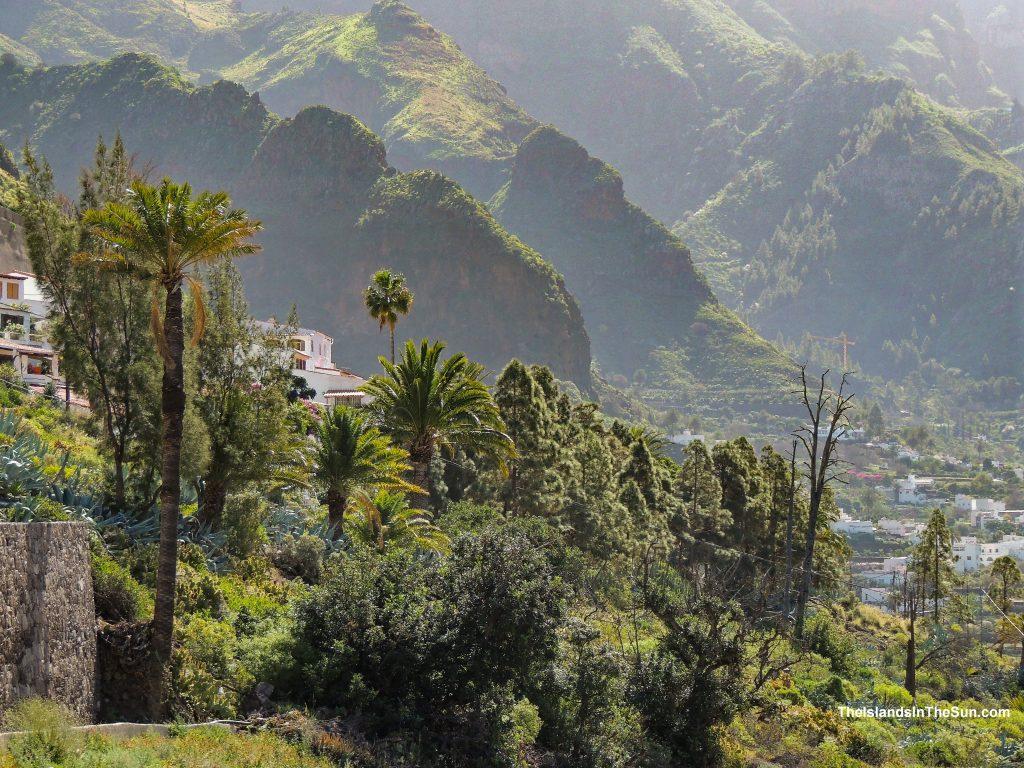 Valle de Agaete - Vin og kaffe - theislandsinthesun.com