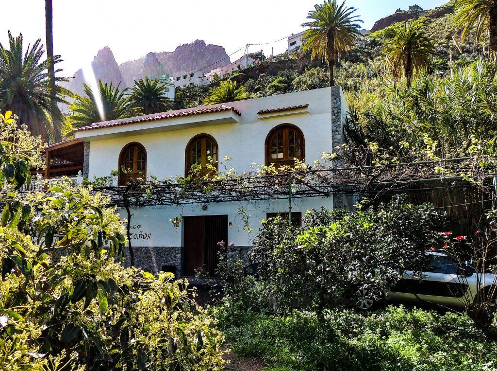 Valle de Agaete - Vin - www.theislandsinthesun.com