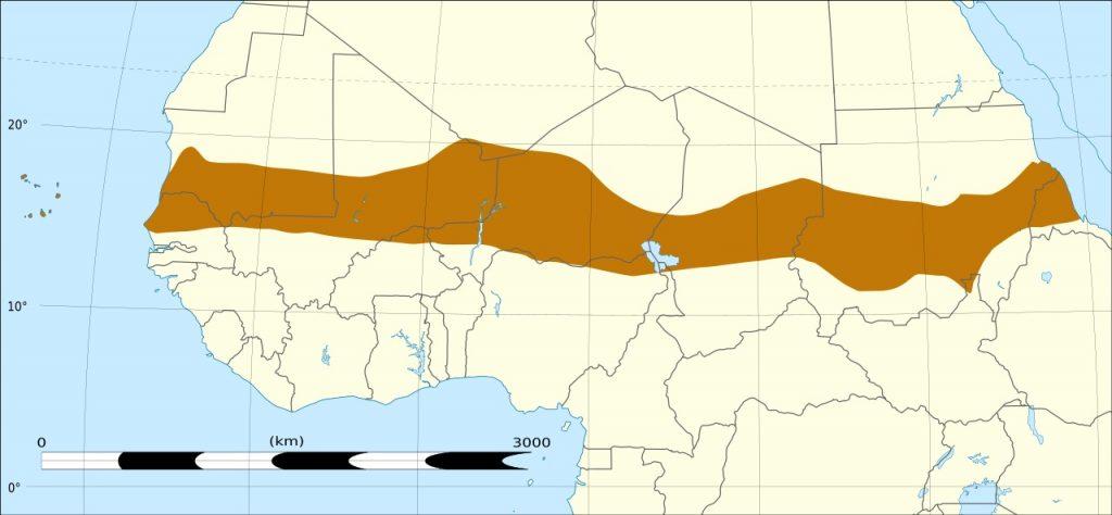 Sahelbeltet (T L Miles Wikipedia)